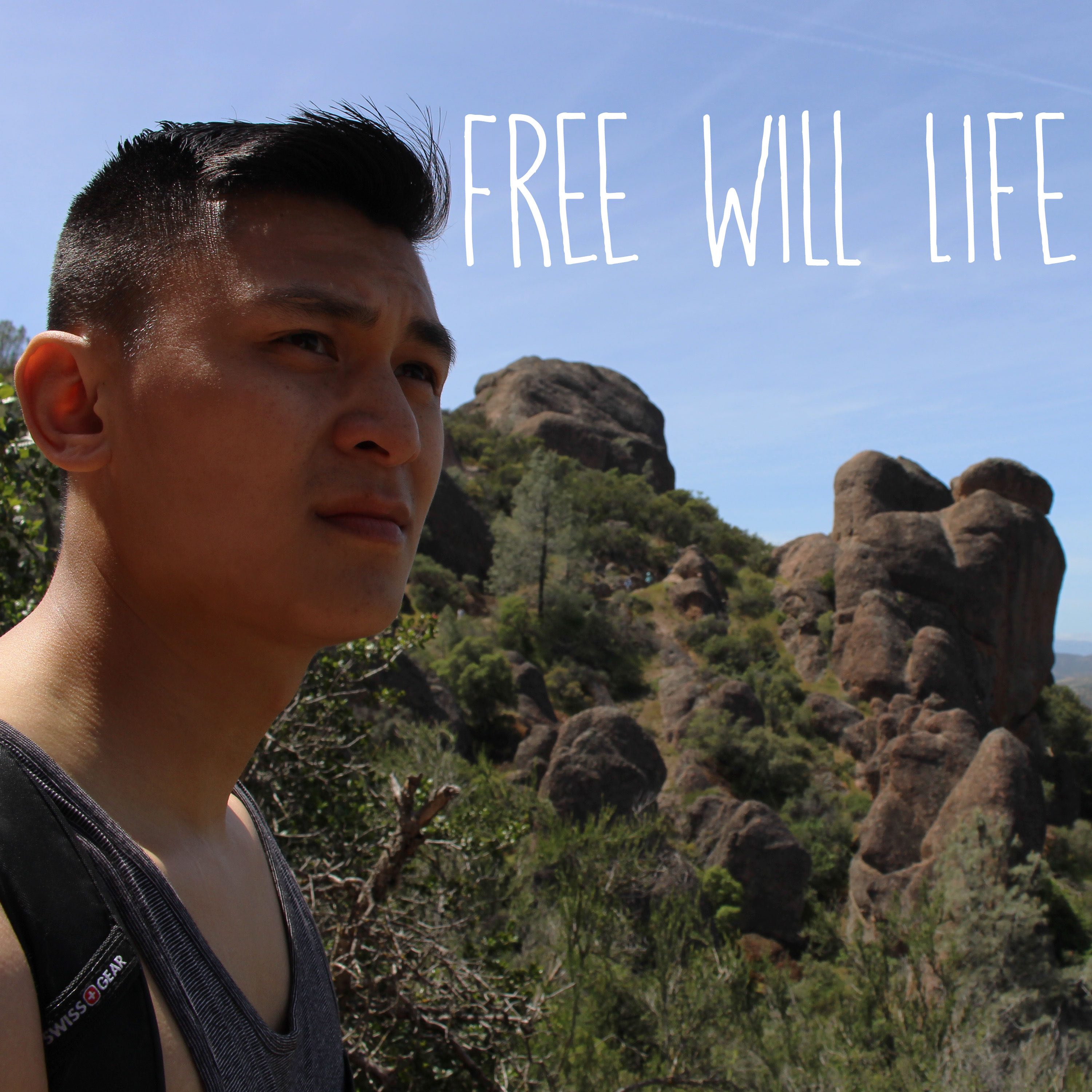 Check out my latest interview on the Free Will Life podcast!
